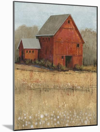 Red Barn View II-Tim O'toole-Mounted Art Print