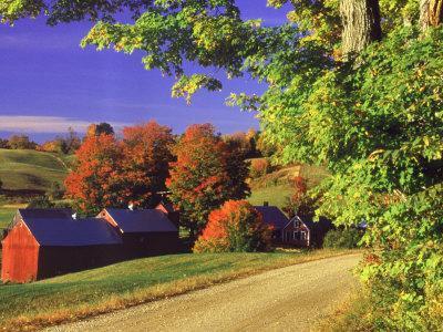 https://imgc.artprintimages.com/img/print/red-barns-along-countryside-vermont_u-l-p3erhb0.jpg?artPerspective=n