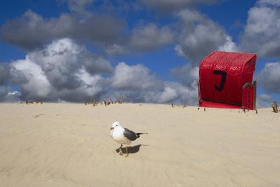 Red Beach Chair in the Dunes, Gull-Uwe Steffens-Photographic Print
