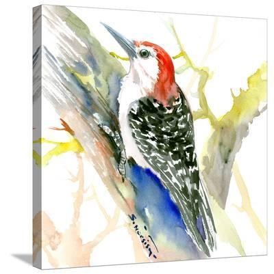 Red Bellied Woodpecker-Suren Nersisyan-Stretched Canvas Print