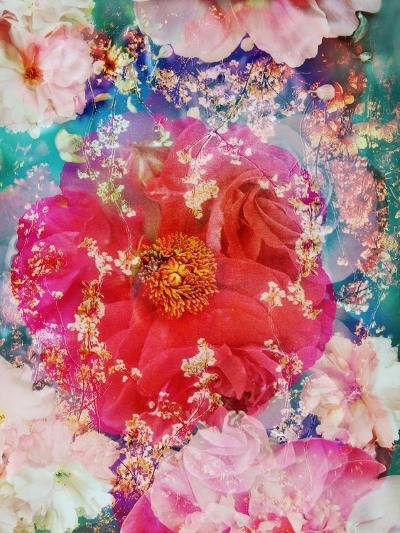 Red Blooming Rose Blossom with Cherry Blossoms Ornaments from Spring Trees-Alaya Gadeh-Photographic Print