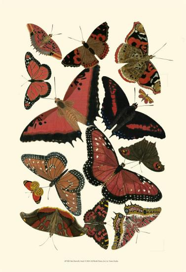 Red Butterfly Study--Art Print