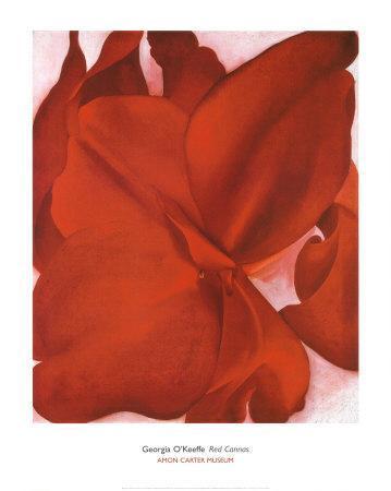 https://imgc.artprintimages.com/img/print/red-cannas_u-l-e6xxj0.jpg?p=0