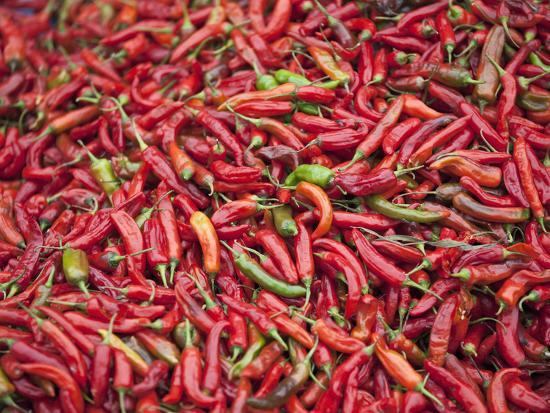 Red Chillies for Sale at Paro Open-Air Market, Red and Green Chillies are Very Important Ingredient-Nigel Pavitt-Photographic Print