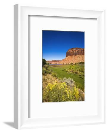 Red cliffs above the Dugout Reservoir, Indian Creek Canyon, Utah-Russ Bishop-Framed Photographic Print