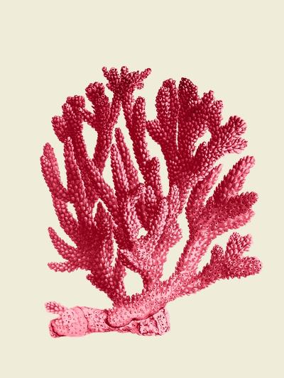 Red Corals 1 a-Fab Funky-Art Print