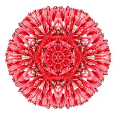 Red Daisy Mandala Flower Kaleidoscopic-tr3gi-Art Print
