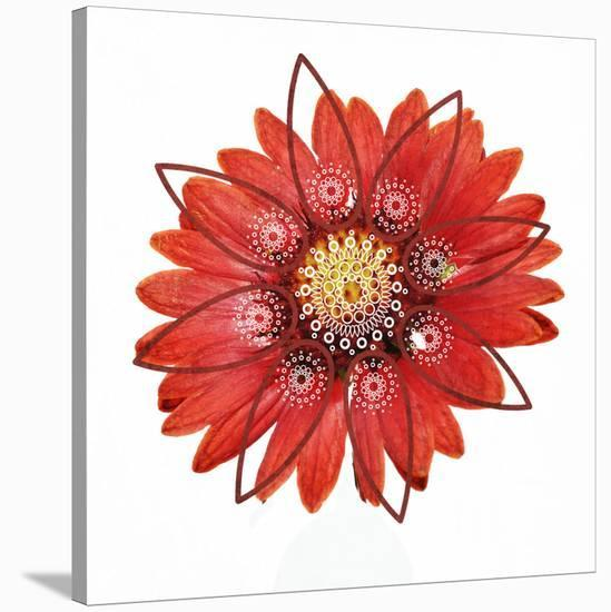 RED Element-Irena Orlov-Stretched Canvas Print