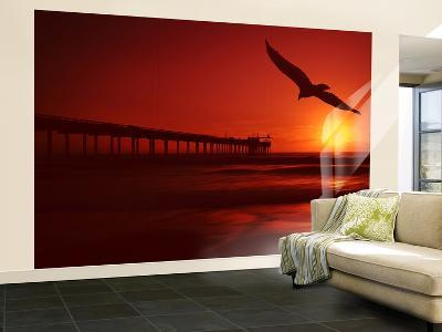 Red Flight-Philippe Sainte-Laudy-Wall Mural – Large