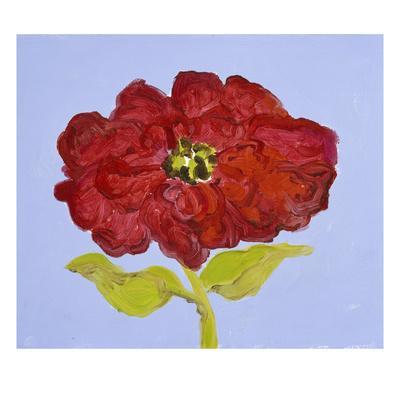 https://imgc.artprintimages.com/img/print/red-flower_u-l-pifd1e0.jpg?p=0