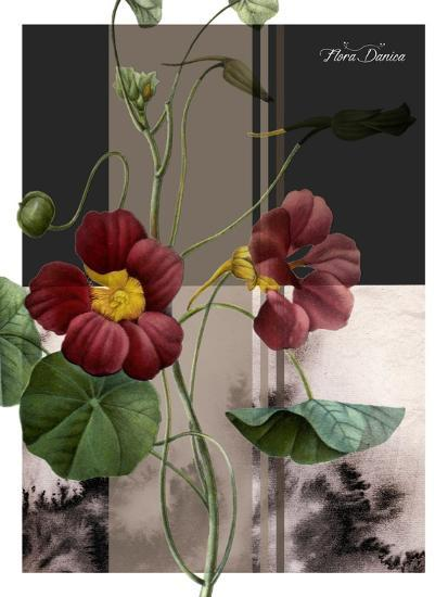 Red Flower-Flora Danica-Art Print