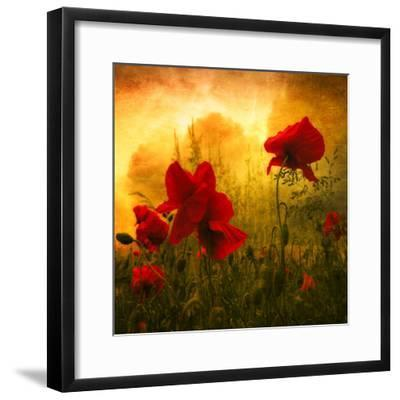 Red for Love-Philippe Sainte-Laudy-Framed Photographic Print