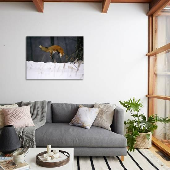 bamboo source tropical home decor with red sofa and blue.htm red fox jumping in the snow  photographic print john conrad  red fox jumping in the snow