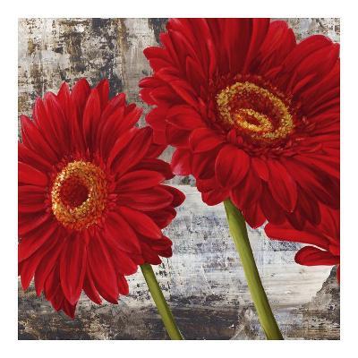 Red Gerberas I-Jenny Thomlinson-Art Print
