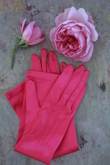 Red Gloves and Rose-Den Reader-Photographic Print