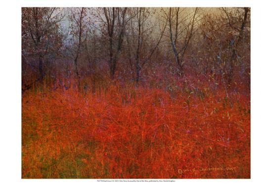 Red Grass I-Chris Vest-Art Print
