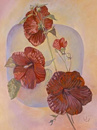https://imgc.artprintimages.com/img/print/red-hibiscus_u-l-q12uy570.jpg?p=0