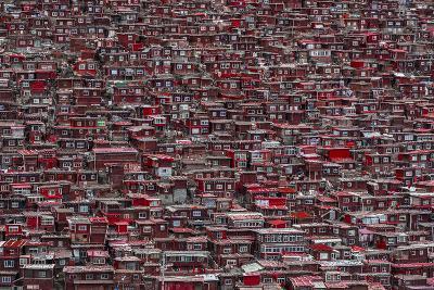 Red Houses-Ali Al-Jazeri-Photographic Print