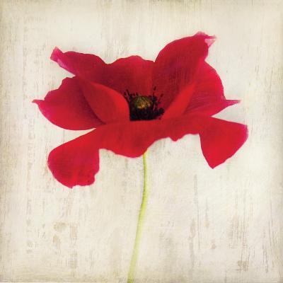 Red I-Amy Melious-Art Print