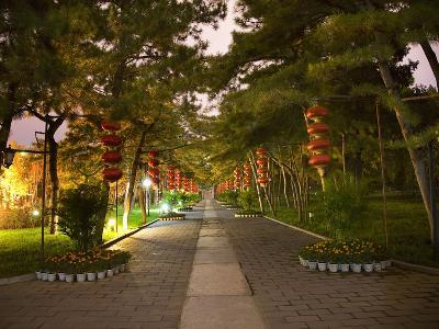Red Lanterns Temple of the Sun Park, Beijing, China Night Shot-William Perry-Photographic Print