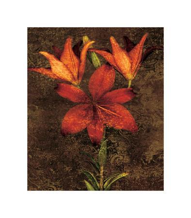 https://imgc.artprintimages.com/img/print/red-lilies_u-l-f7m6220.jpg?p=0