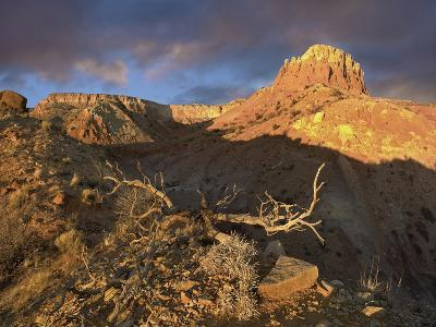 Red Mesa Near Abiquiu at Sunset, New Mexico, Usa-Tim Fitzharris-Photographic Print