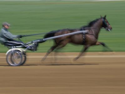 Red Mile Harness Track, Lexington, Kentucky, USA--Photographic Print