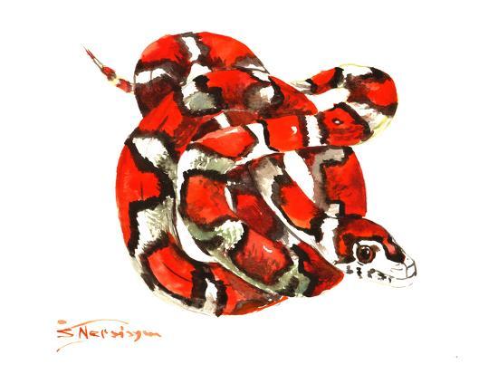 Red Milk Snake-Suren Nersisyan-Art Print