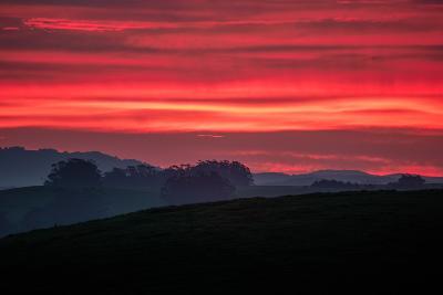 Red Morning Skies, Petaluma Hills, California--Photographic Print