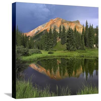 Red Mountain reflected in pond, San Juan Mountains, Colorado-Tim Fitzharris-Stretched Canvas Print