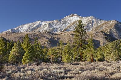 Red Mountain, Sierra Nevada, California, Usa-Rainer Mirau-Photographic Print