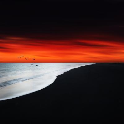 Red Night-Philippe Sainte-Laudy-Photographic Print