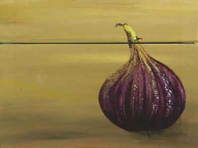 Red Onion on a Box-Gigi Begin-Giclee Print