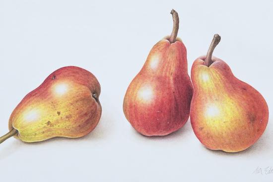 Red Pears, 1996-Margaret Ann Eden-Giclee Print