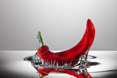 Red Pepper FreshSplash-Steve Gadomski-Photographic Print