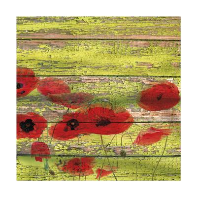 Red Poppies 1-Irena Orlov-Giclee Print
