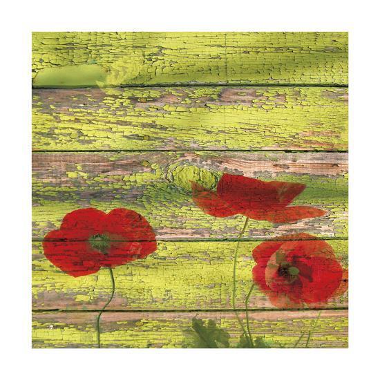 Red Poppies 2-Irena Orlov-Giclee Print