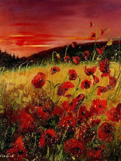 Red Poppies Sunset-Pol Ledent-Art Print