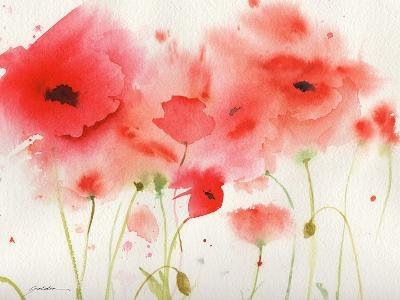 Red Poppies-Sheila Golden-Art Print
