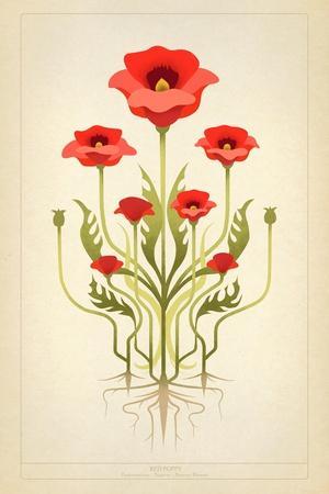 Red Poppies--Art Print