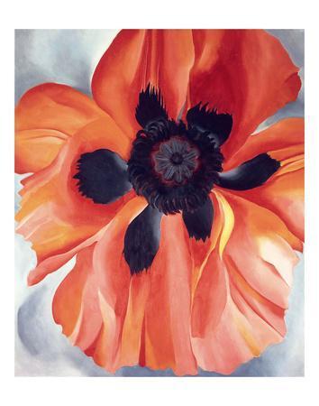 https://imgc.artprintimages.com/img/print/red-poppy-no-vi-1928_u-l-f8nm7c0.jpg?p=0