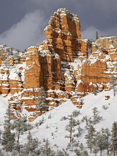 Red Rock Formations, Red Canyon, Dixie National Forest, Utah, USA-James Hager-Photographic Print