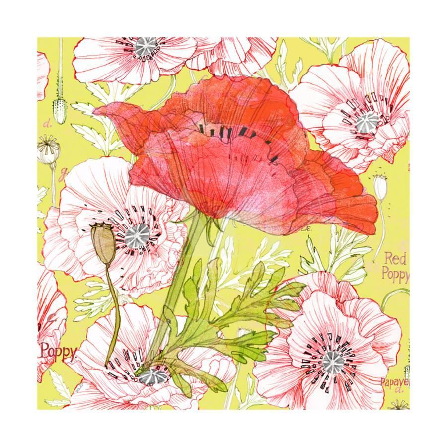 Red Romance Poppies, Single Bloom Side and Floral Poppy Art Print by ...