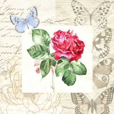 https://imgc.artprintimages.com/img/print/red-rose-with-butterflies_u-l-f9949c0.jpg?p=0