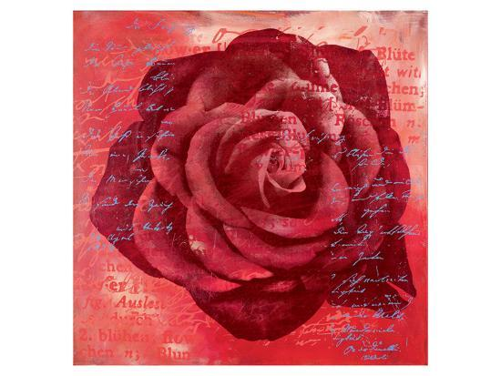 Red Rose-Anna Flores-Premium Giclee Print