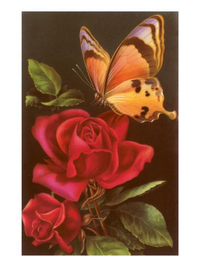 Red Roses with Yellow Swallowtail Butterfly--Art Print