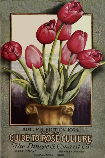 Red Roses-Vintage Apple Collection-Giclee Print
