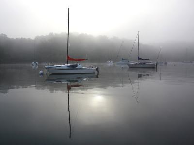 Red Sail-Tammy Putman-Photographic Print