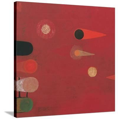 Red Seed #6-Bill Mead-Stretched Canvas Print