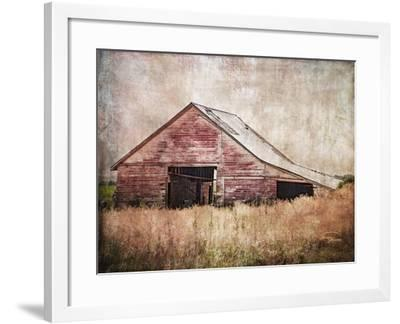 Red Shed-Ramona Murdock-Framed Photographic Print